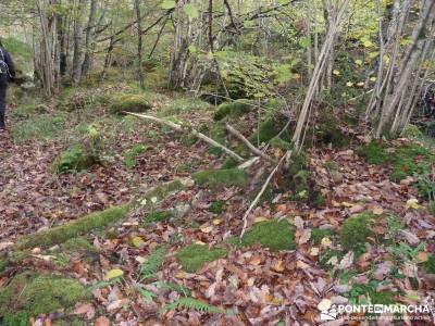 Parque Natural Saja-Besaya y Valderredible (Monte Hijedo) escalada el senderismo que es senderismo